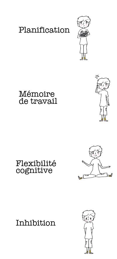 fonctions executives aideor, inhibition, flexibilité cognitive, planification, mémoire de travail